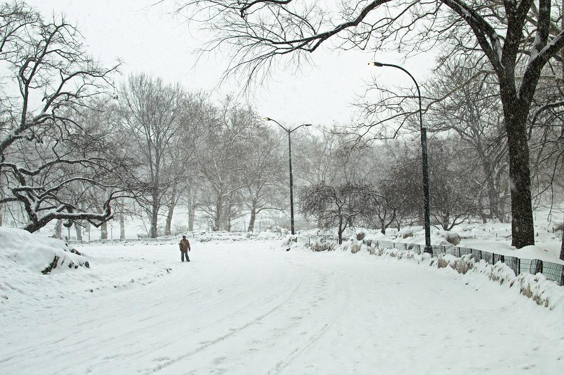 central park winter snow