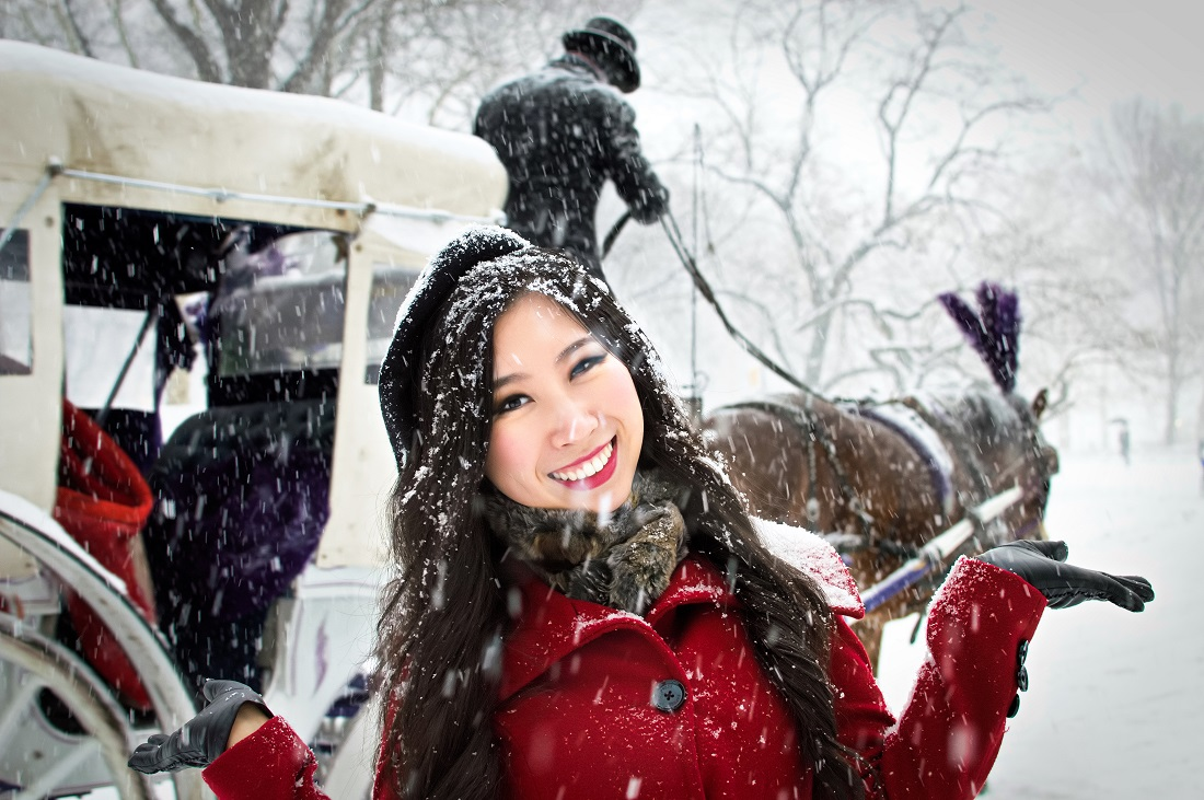 horse carriage central park winter