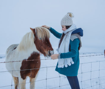 Friends on the Ring Road, Iceland