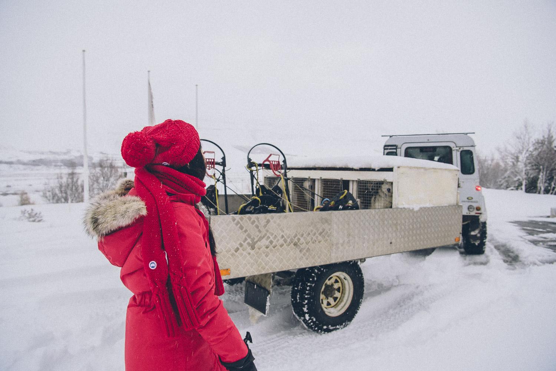 dog sledding iceland 13