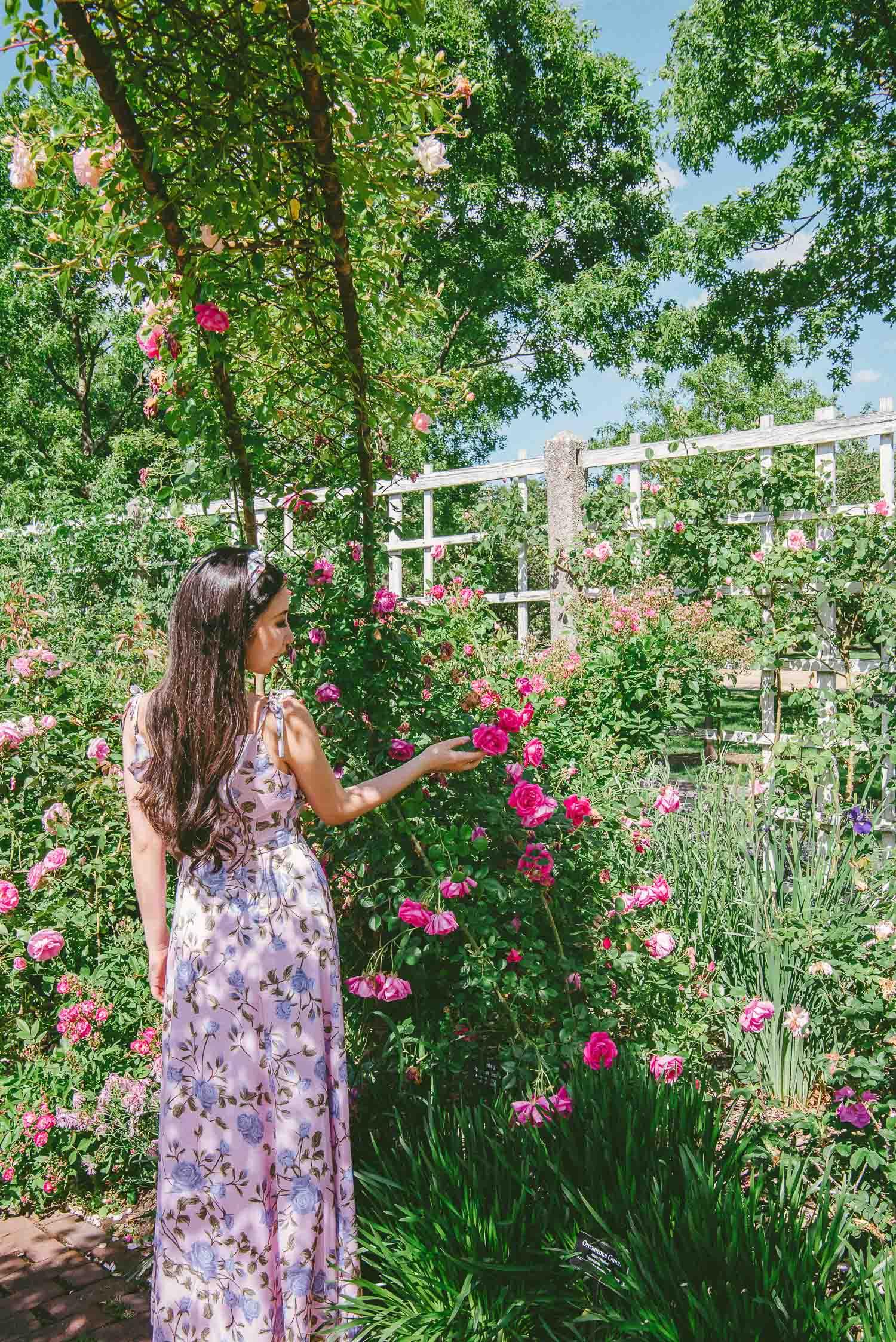 brooklyn rose garden 15